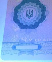 Диплом - свечение УФ (Кропивницкий (Кировоград))